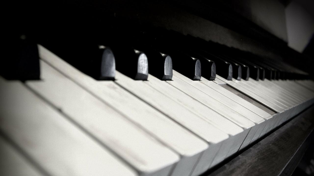 Пианист свири на животните в зоопарк в Колумбия