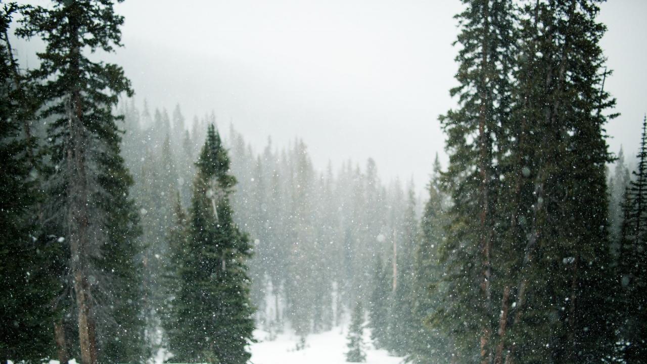 Утре отново ще вали сняг в страната