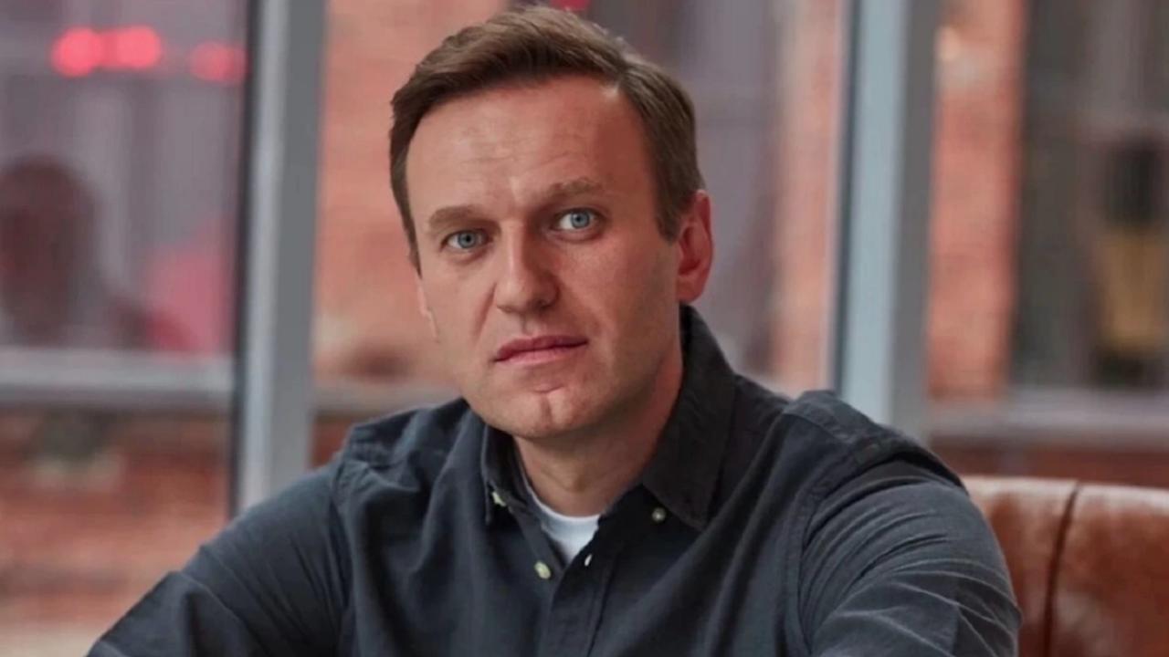 Руска комисия по човешките права потвърди, че Навални има болки в крака, но не предприе по-нататъшни действия