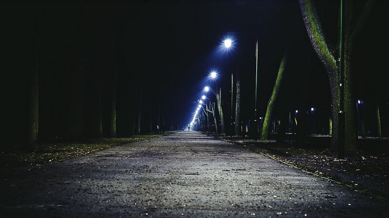 """Подменят осветителните тела по централната алея на парк """"Кайлъка"""" в Плевен"""