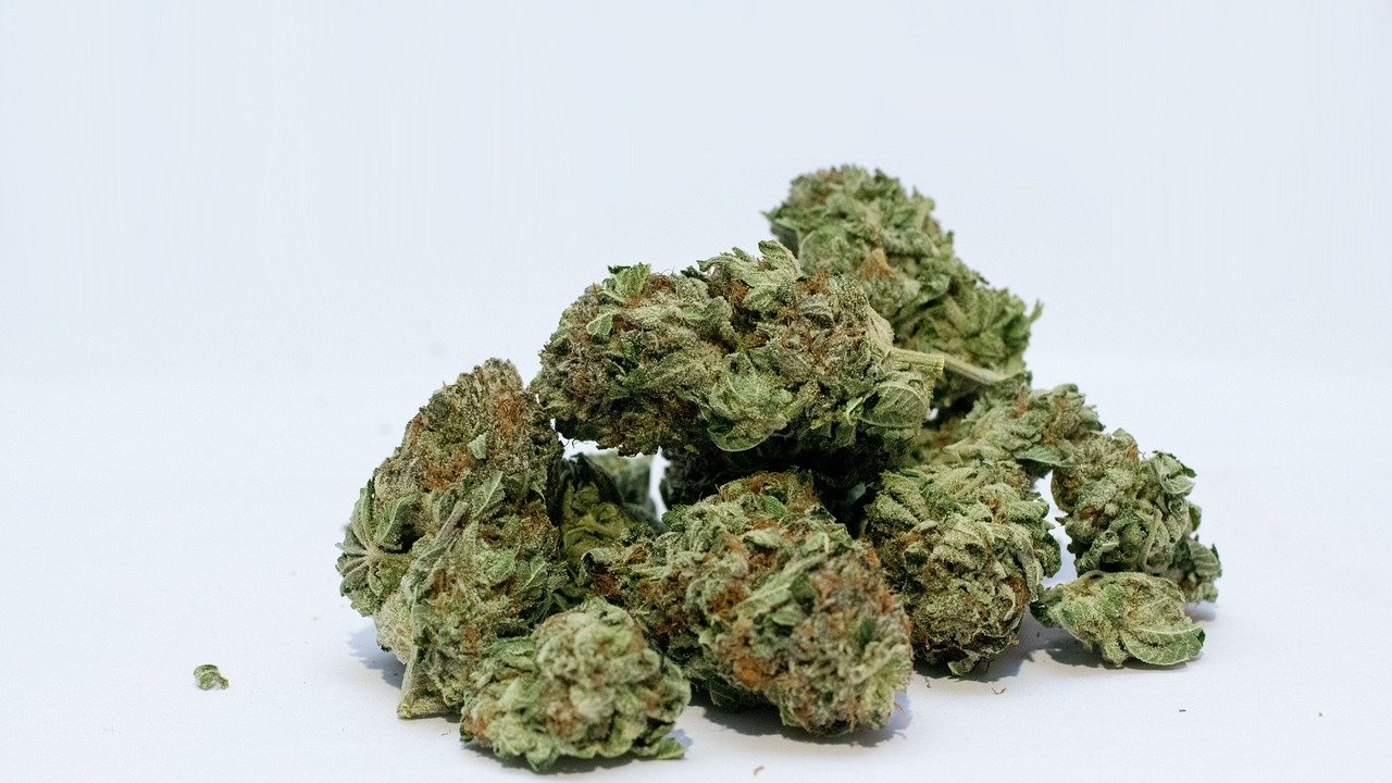 Лаборатория за наркотици откриха в планинското село Говежда в Монтанско