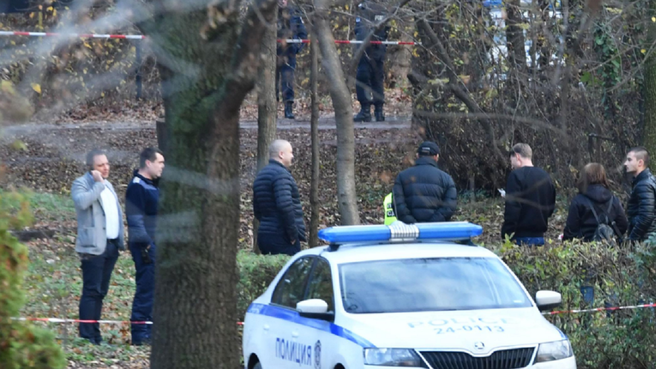Бум на дръзките нападения спрямо горски служители