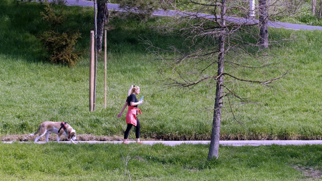От 12 април започват първите обработки на зелените площи срещу кърлежи