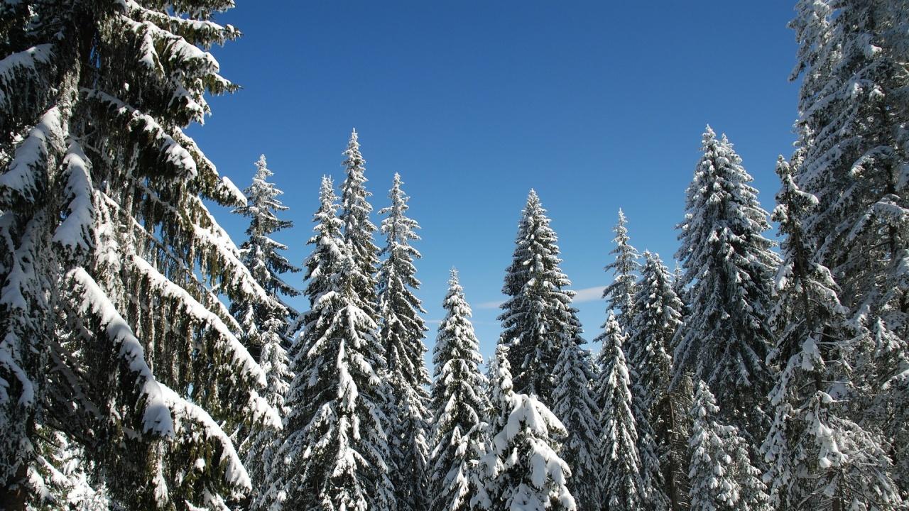 Зимният сезон в Пампорово приключи