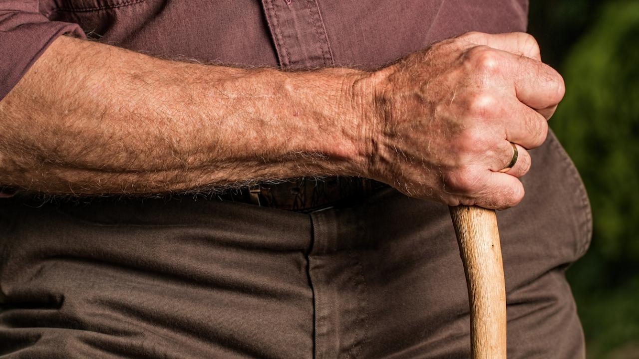 Десет столетници живеят в община Плевен