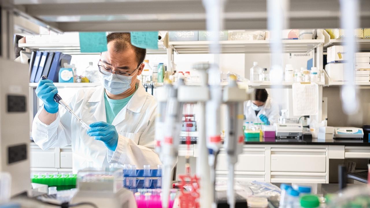 Британски учени откриха по-висок риск за тромбози в мозъка от COVID-19 в сравнение с ваксините