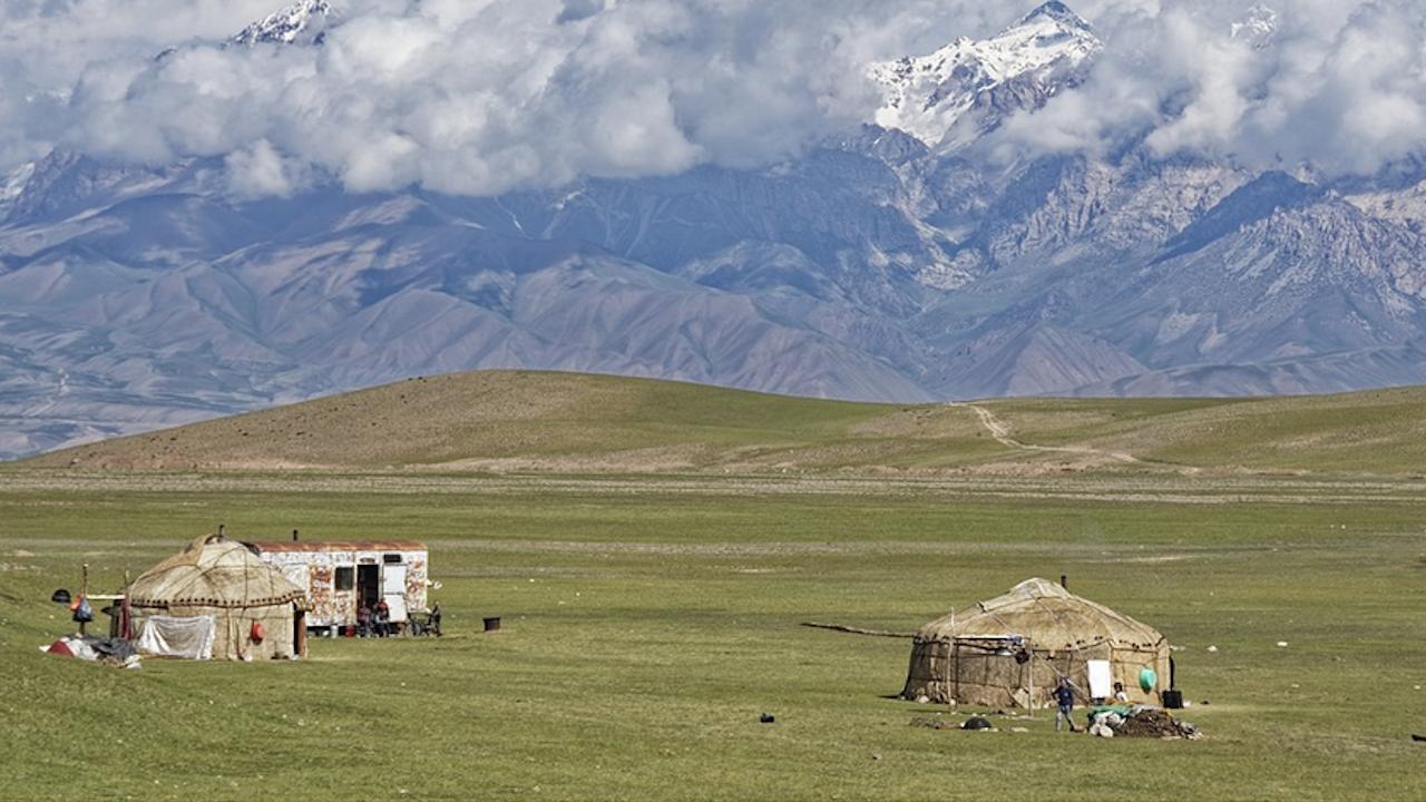 В Киргизстан открили чудодейно лечение на COVID-19 - с токсичен корен