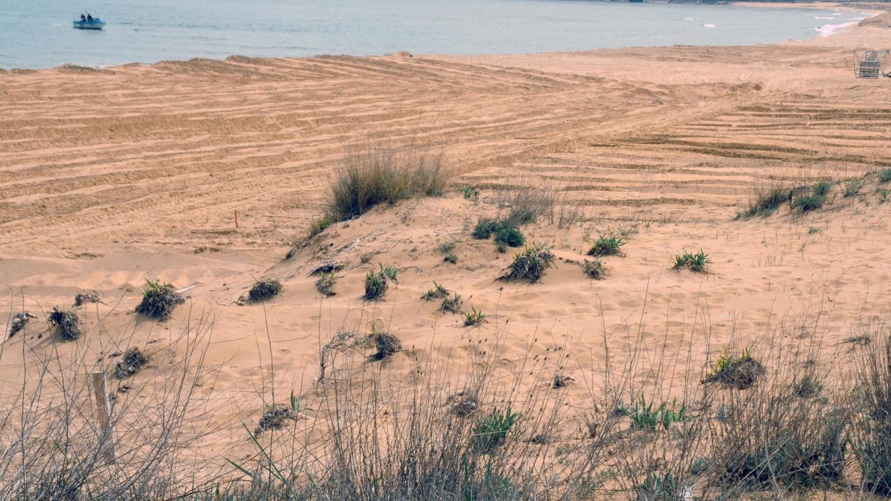 """Глоба за концесионера на плаж """"Смокините-север"""" в размер на 3856 лв."""