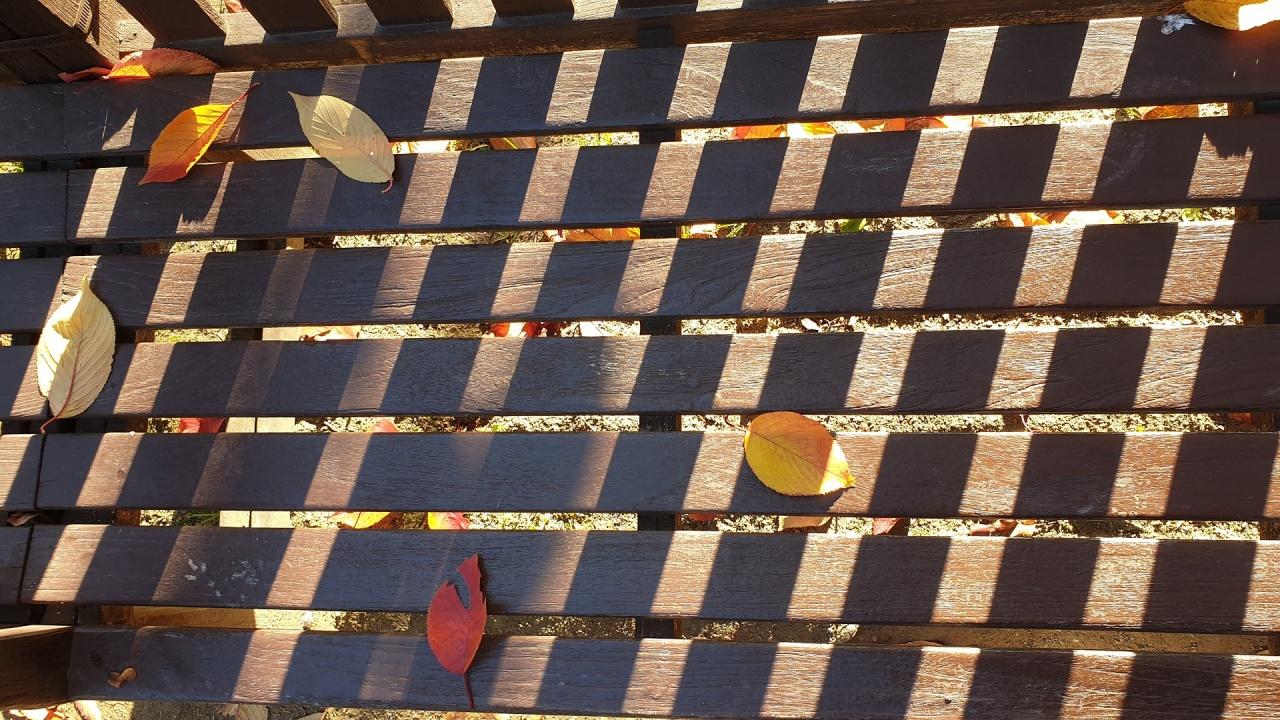 Инсталираха соларната пейка във Видин