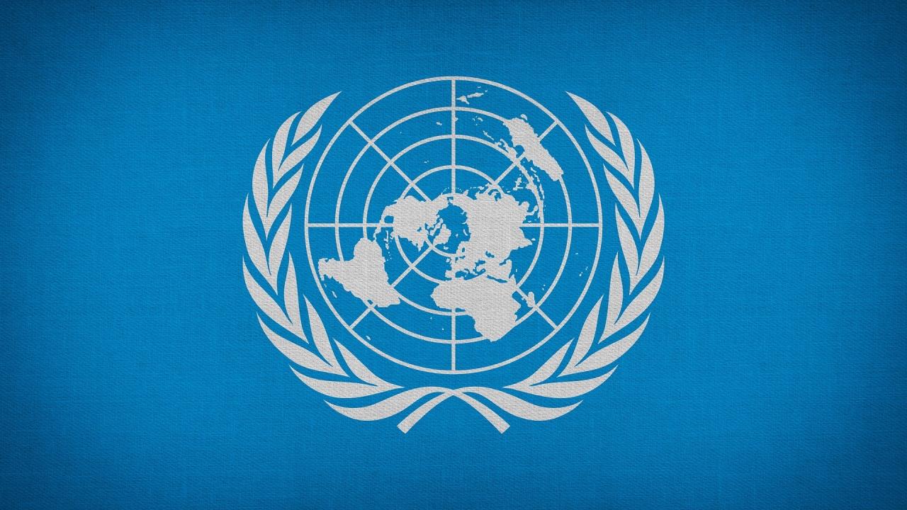 ООН се разтревожи за принцеса Латифа