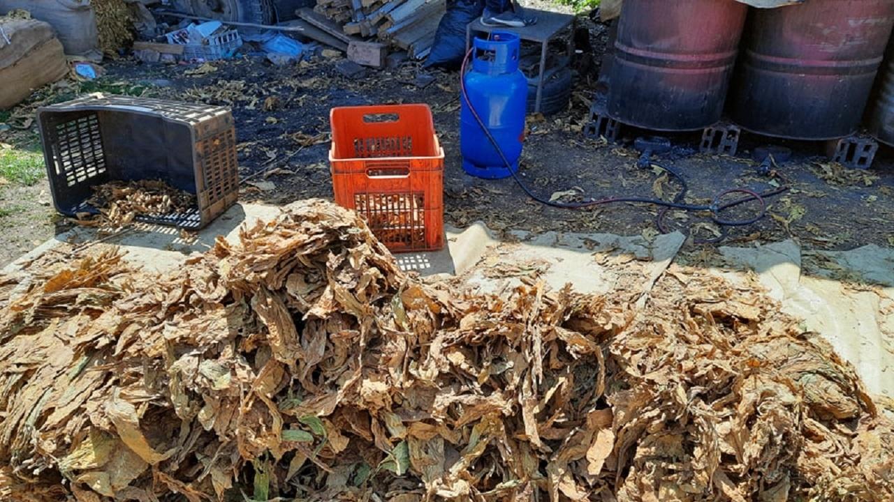 Криминалисти от Ловеч хванаха голямо количество контрабанден тютюн