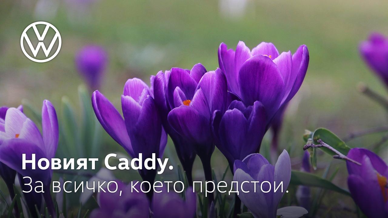 Уикенд прогноза за времето: Как посрещаме Цветница?