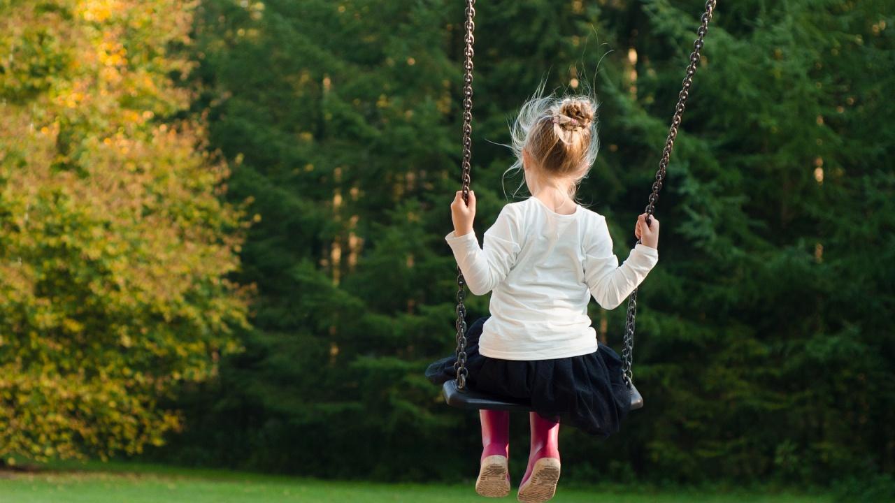 Столичната община засажда 500 дървета в дворовете на детски градини и училища
