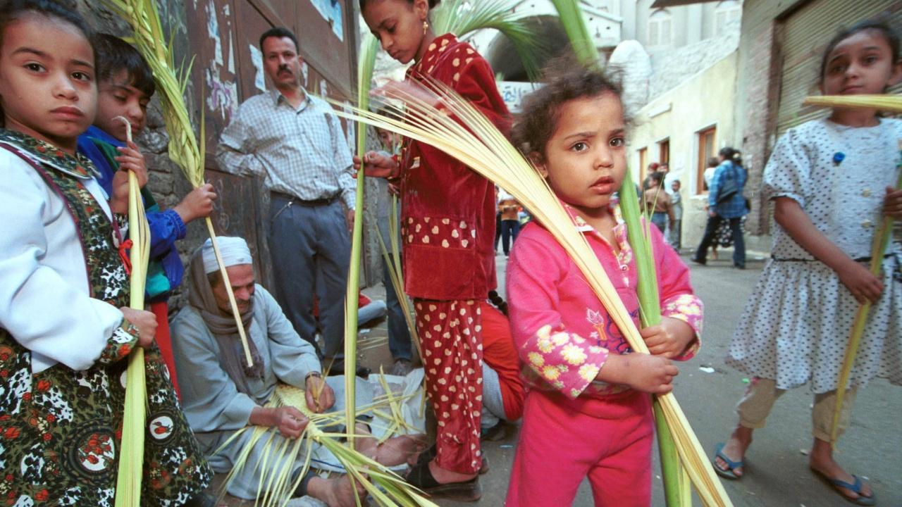 Цветница в Египет при строги противоепидемични мерки