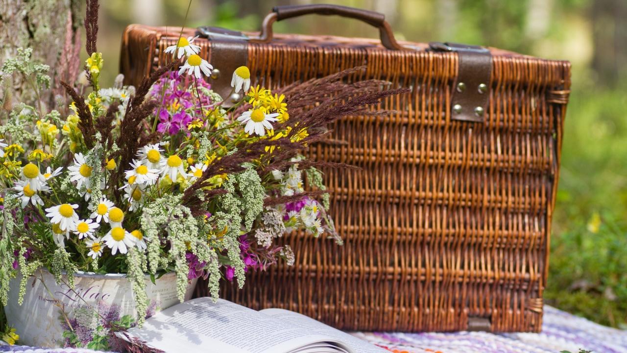 Свежи и лесни предложения за летен пикник сред природата