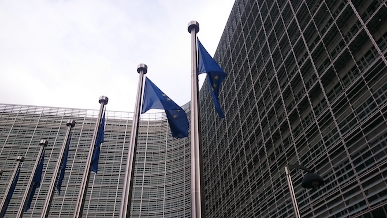 ЕС плати гаранцията за освобождаването на грузинския опозиционер Ника Мелия