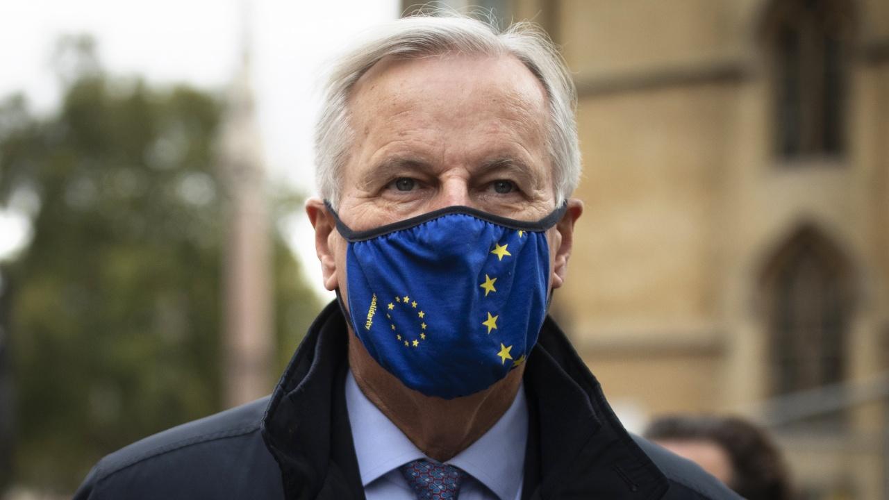 Бившият главен преговарящ на ЕС за Брекзит призова за спиране на цялата имиграция към Франция за пет години