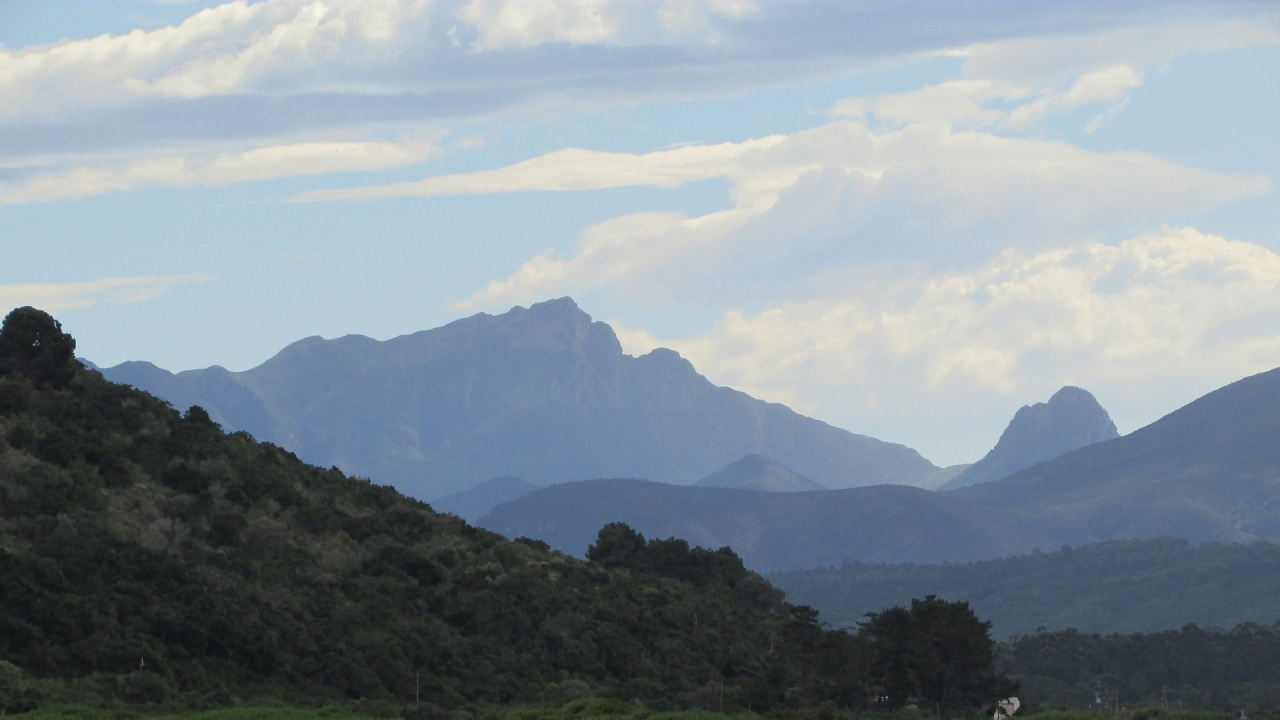 Почистват Осоговската планина