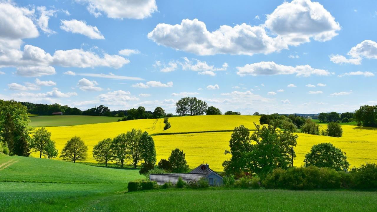 С какво време идват абитуриентските балове и какво лято ни очаква?