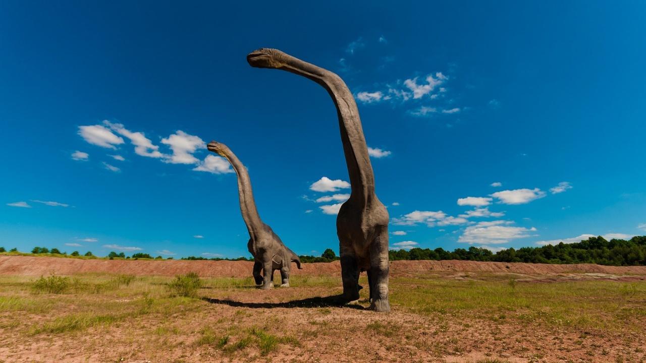 Палеонтолози идентифицираха нов вид динозавър - бил благ и общителен