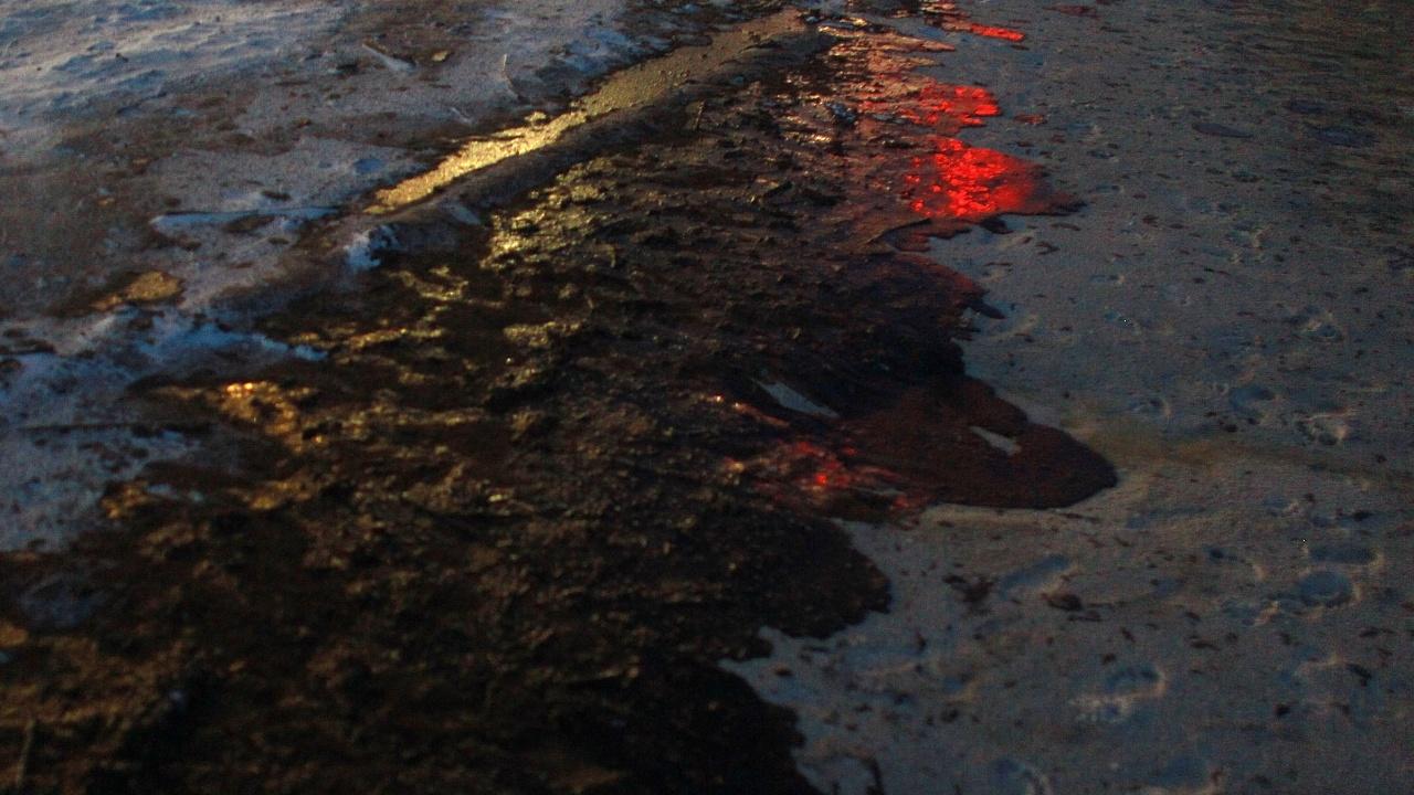 Локализираха петролния разлив в Русия