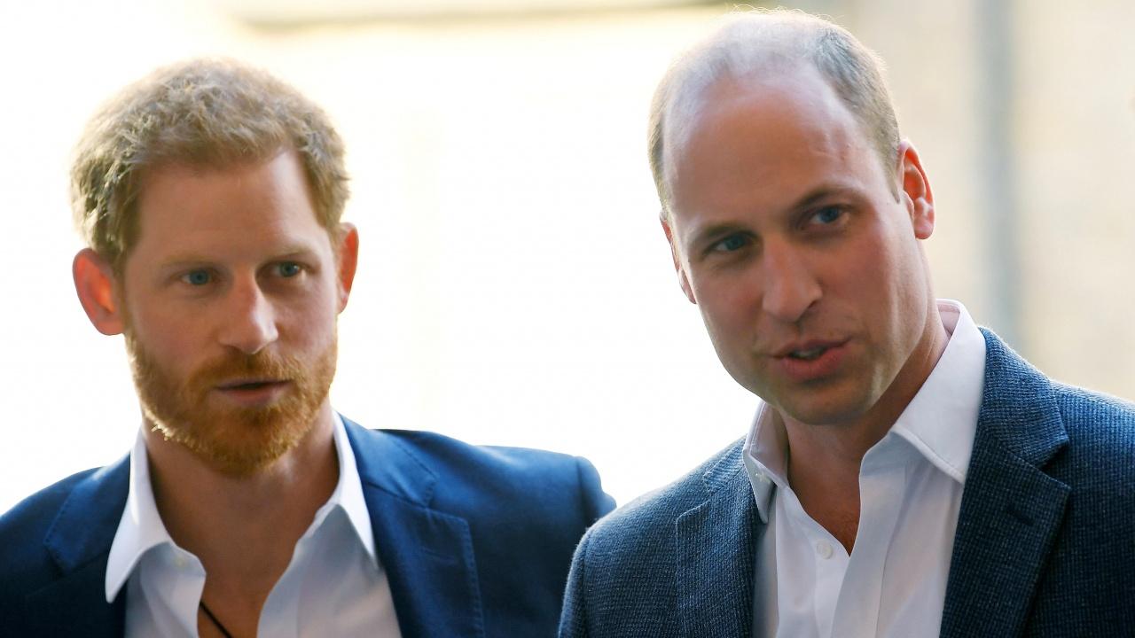 Принц Уилям и Хари също реагираха на доклад за принцеса Даяна от 1995 г.