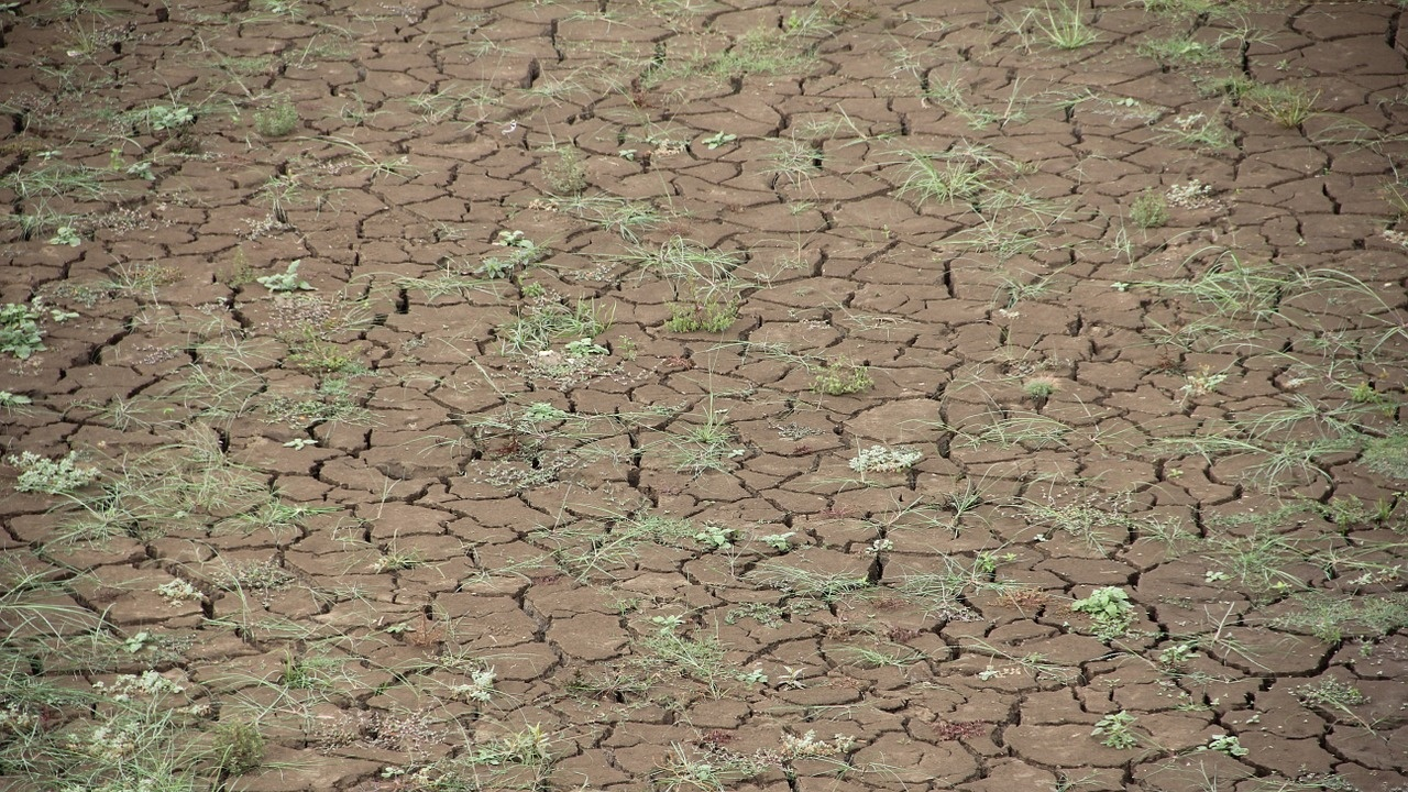 Критичната точка в глобалното затопляне може да бъде достигната временно още през следващите пет години