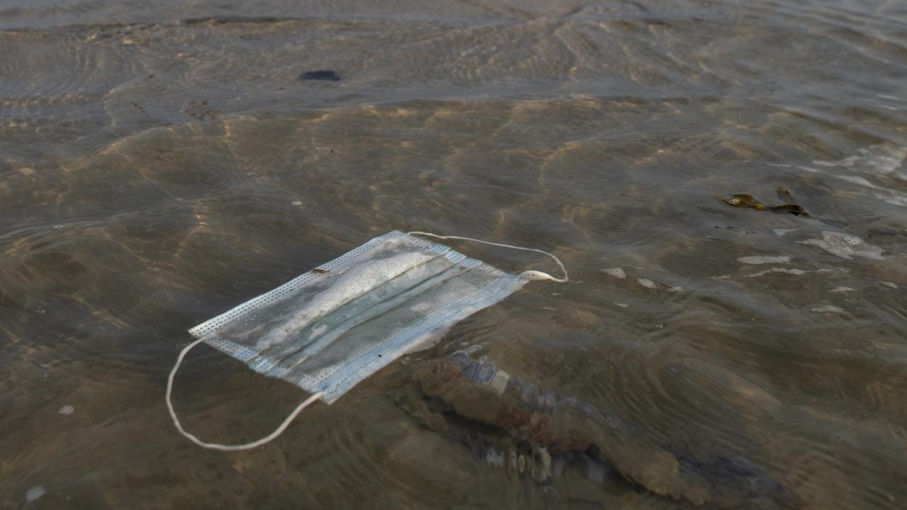 Повече маски от медузи в морето