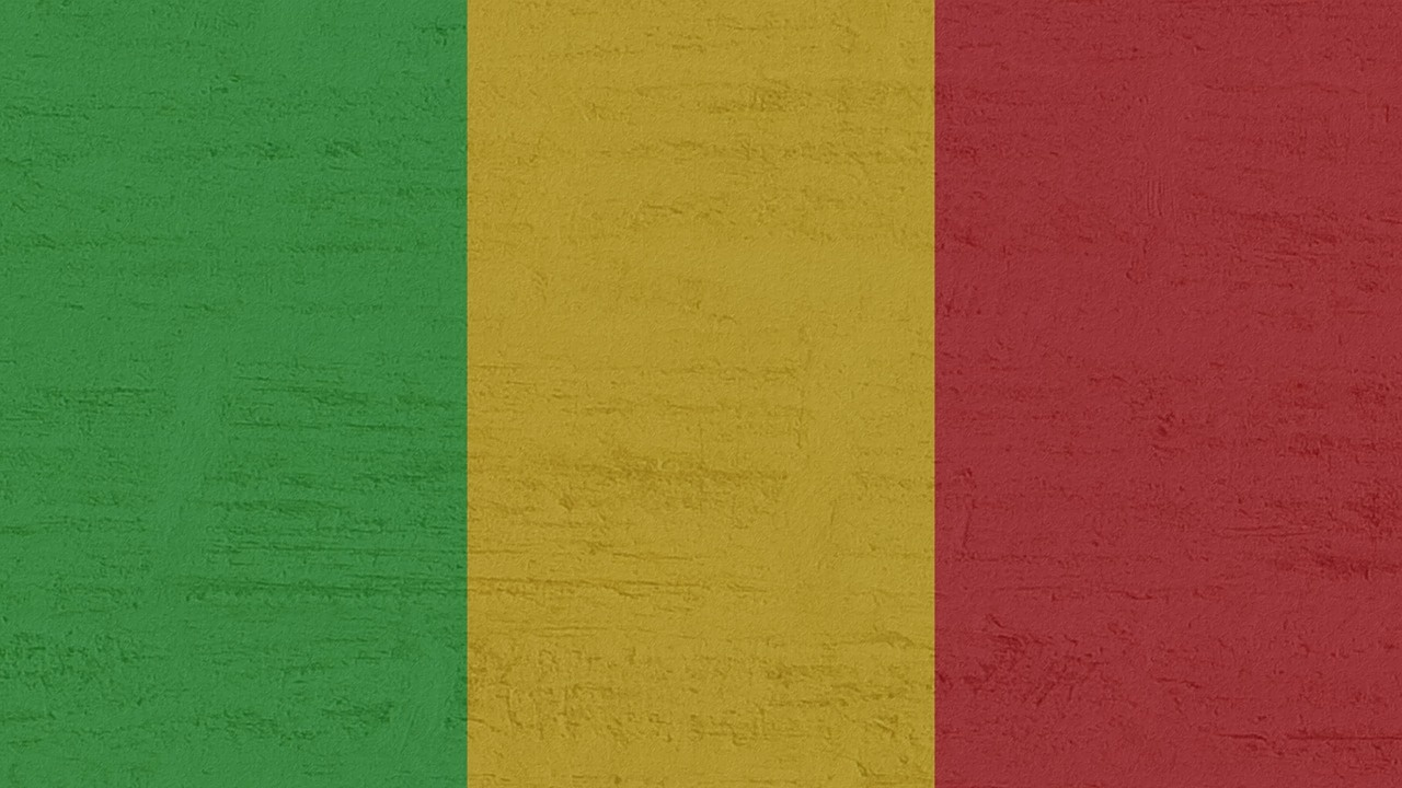 Конституционният съд в Мали обяви полковник Гоита за държавен глава