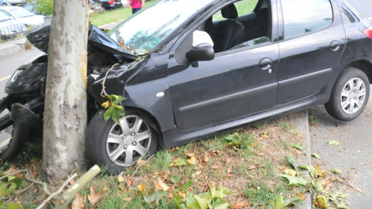 Спътник на пиян шофьор загина при катастрофа до димитровградско село