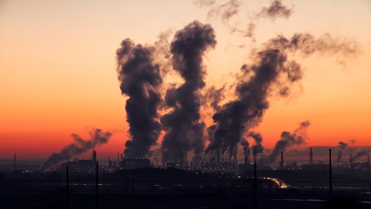 Учени установиха как замърсяването на въздуха причинява загуба на обоняние