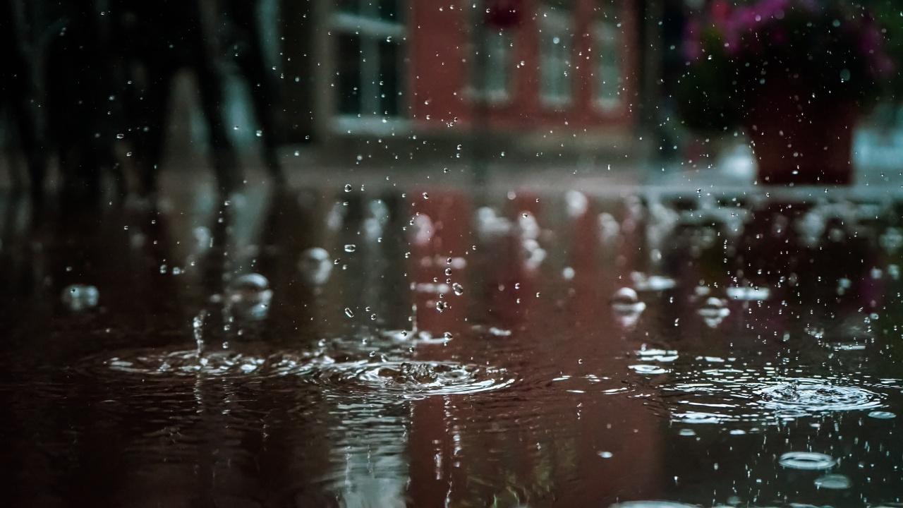 Юни идва с дъжд и хладно време