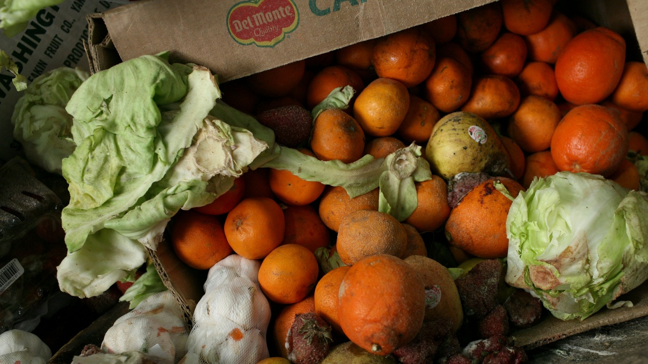 На всеки българин се падат по близо 100 кг изхвърлена храна всяка година