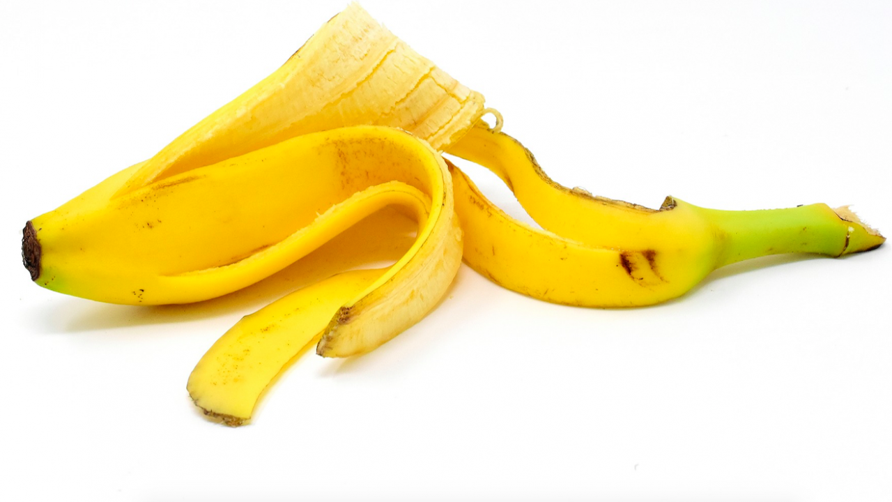 Учени създадоха строителен материал от бананови кори и водорасли
