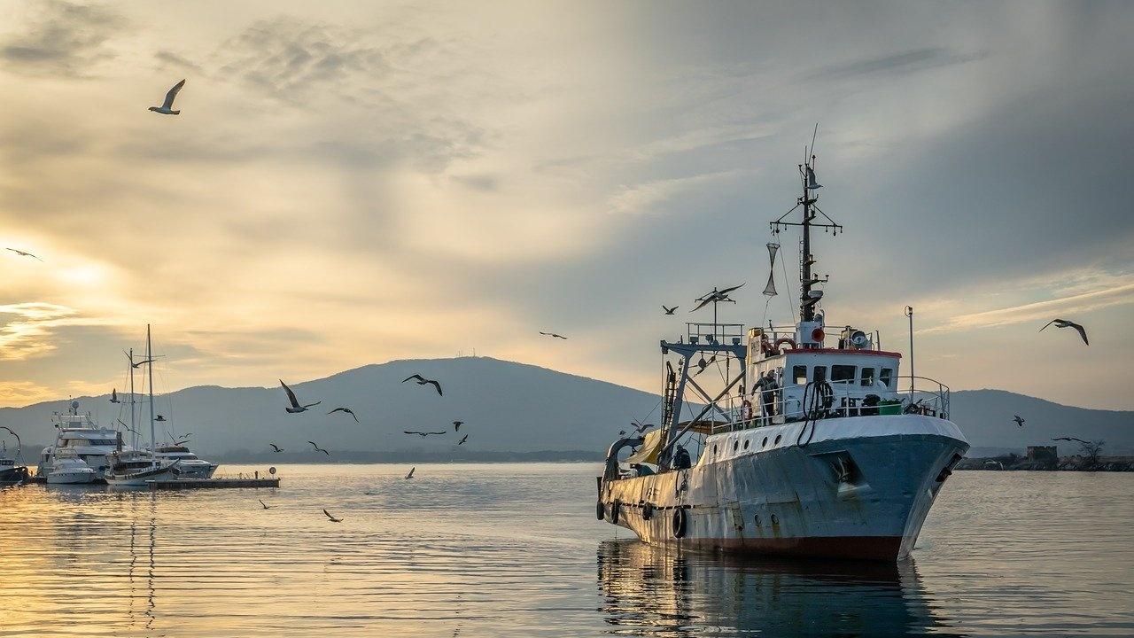 Япония скастри Русия заради задържането на кораб