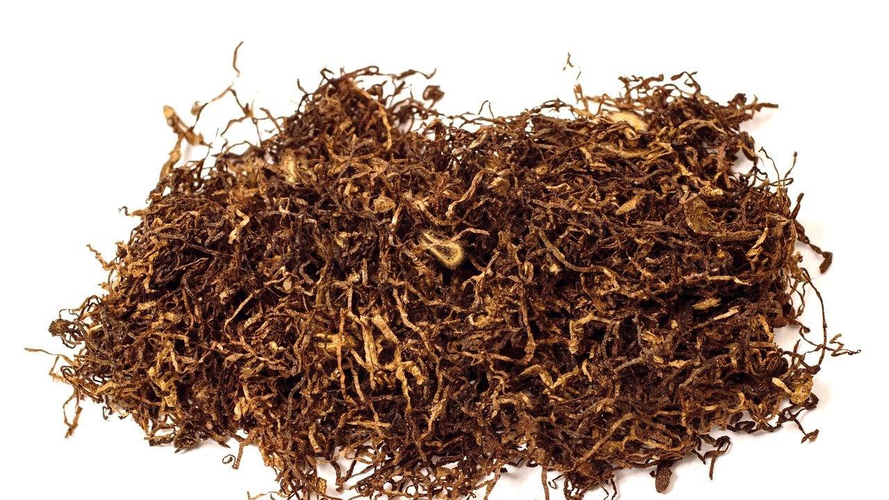 Иззеха 615 кг контрабанден тютюн в Плевенско