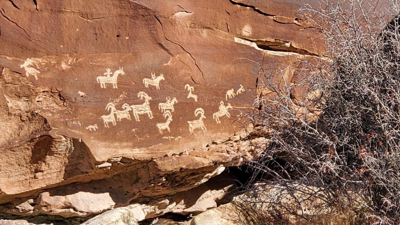 Ерозия застрашава най-старите скални рисунки в света