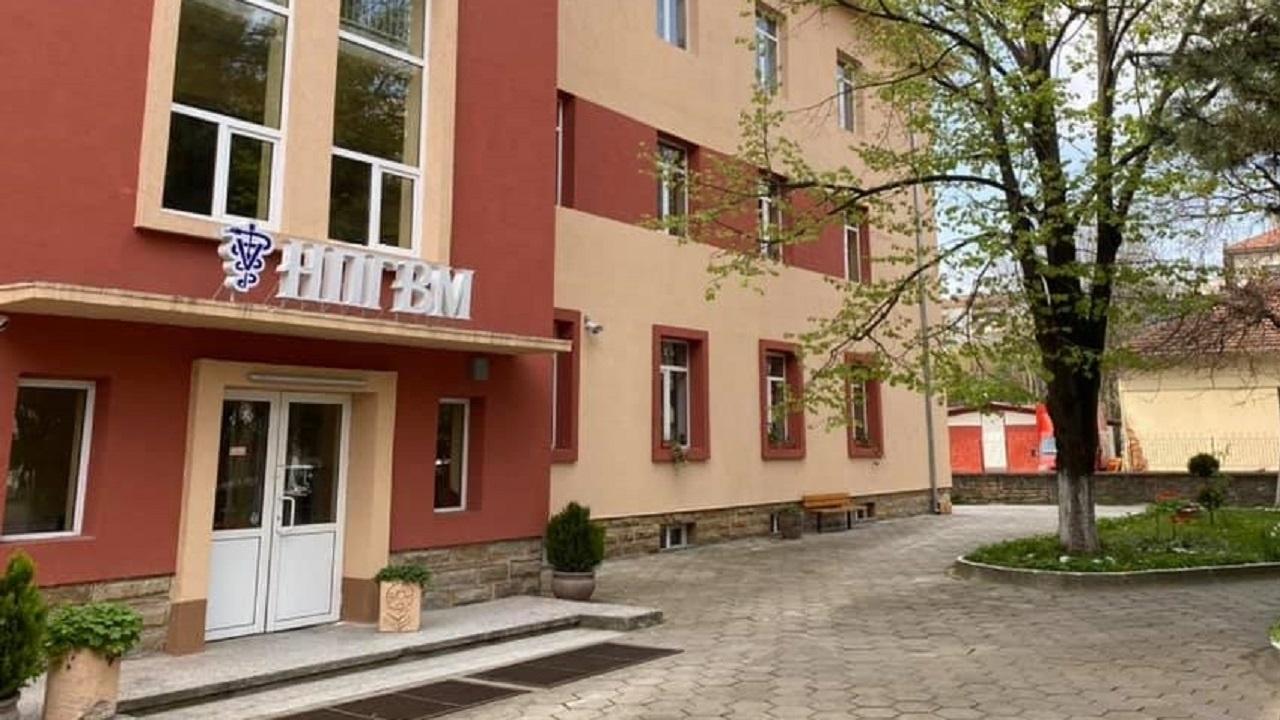 Ветеринарната гимназия в Ловеч отбелязва 75-годишнина