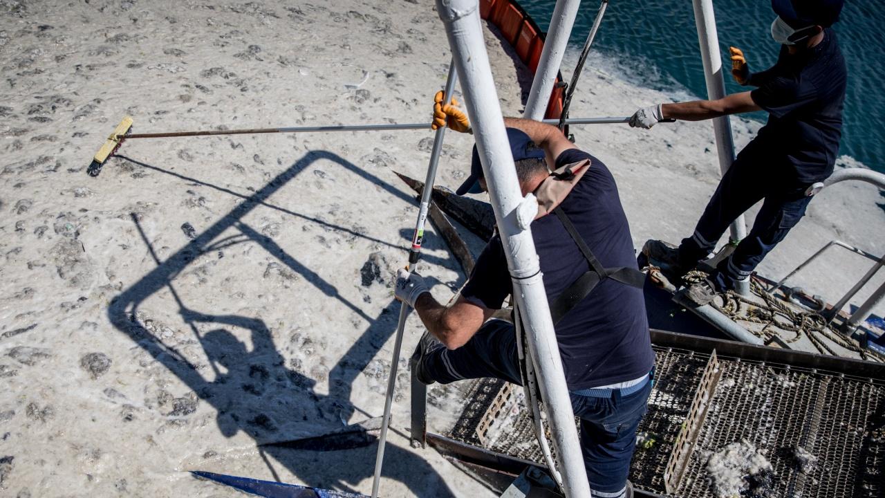 В Турция събраха над 392 кубически метра морска слуз от Мраморно море