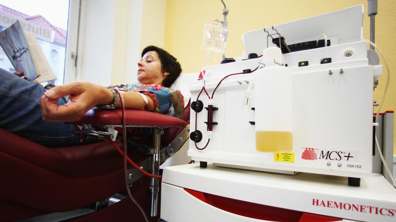 Над три четвърти от кръводарителите у нас дават кръв под натиск или незаконно