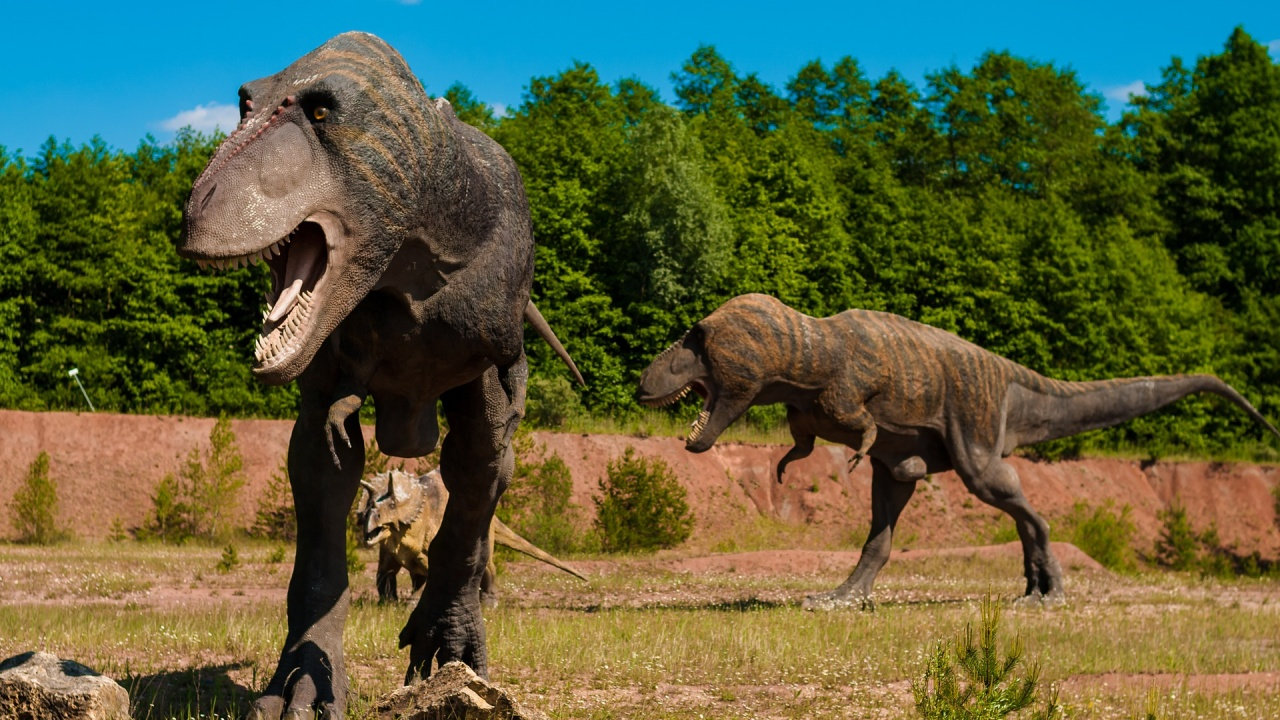 Климатът по времето на динозаврите е бил с горещо лято и топла зима