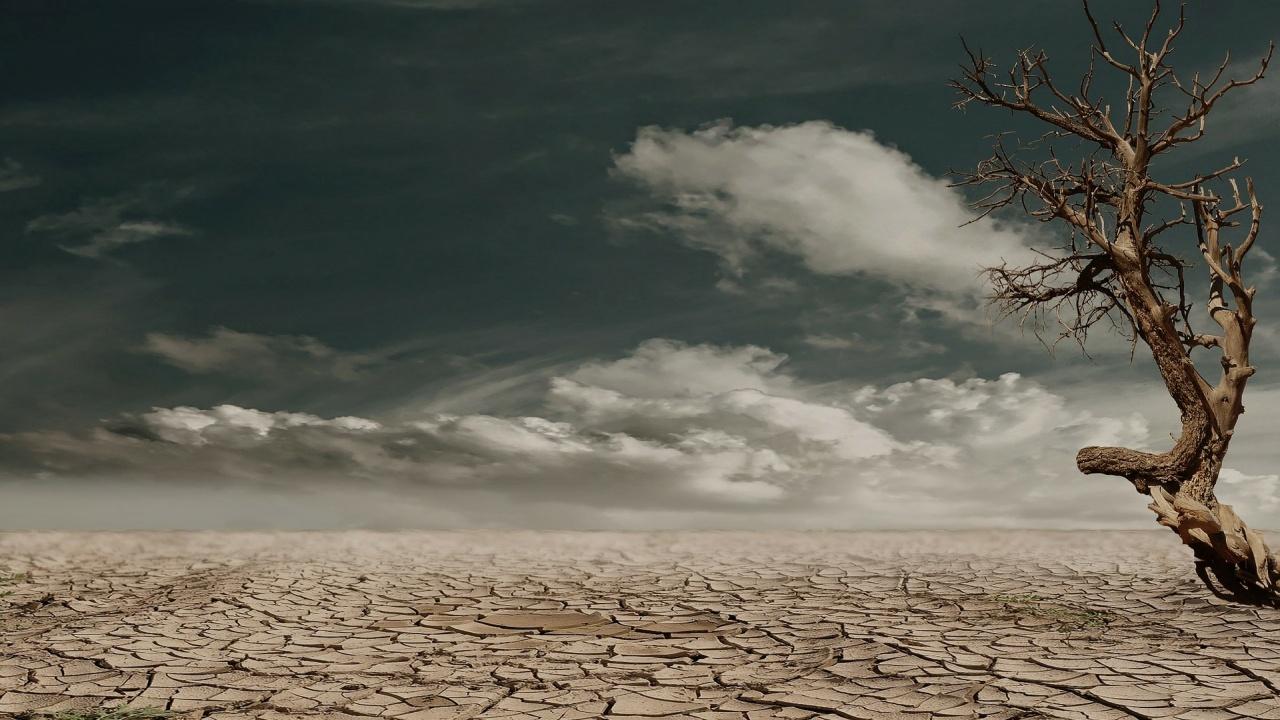 """ООН предупреди, че сушата може е """"следващата пандемия"""""""
