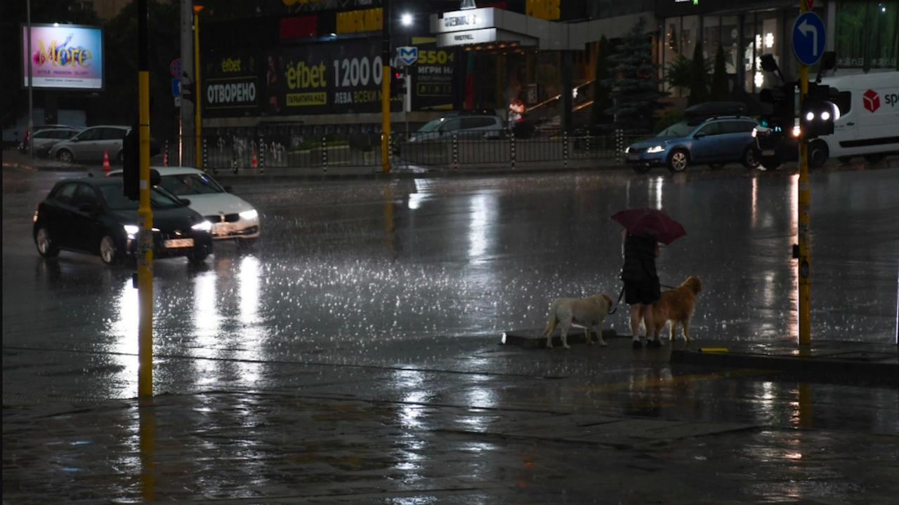 Екипите на Столична община реагират на сигналите във връзка със силния дъжд и вятър в София
