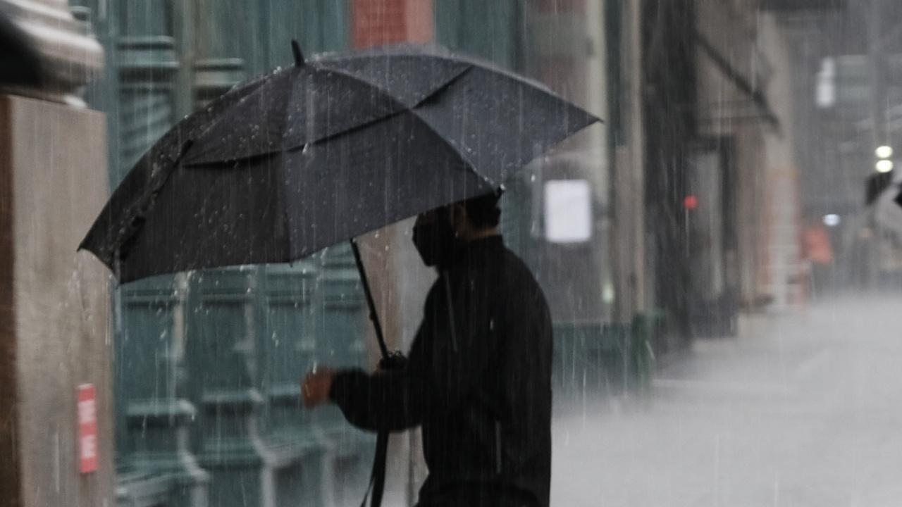 Заради стихии около 15 000 души край Москва останаха без ток