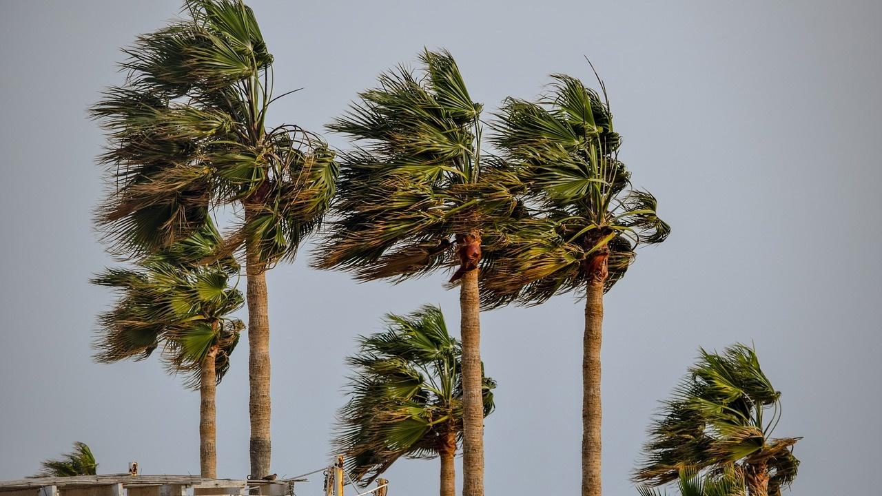 Тропическата буря Елза преминава над Куба, без да причини сериозни щети