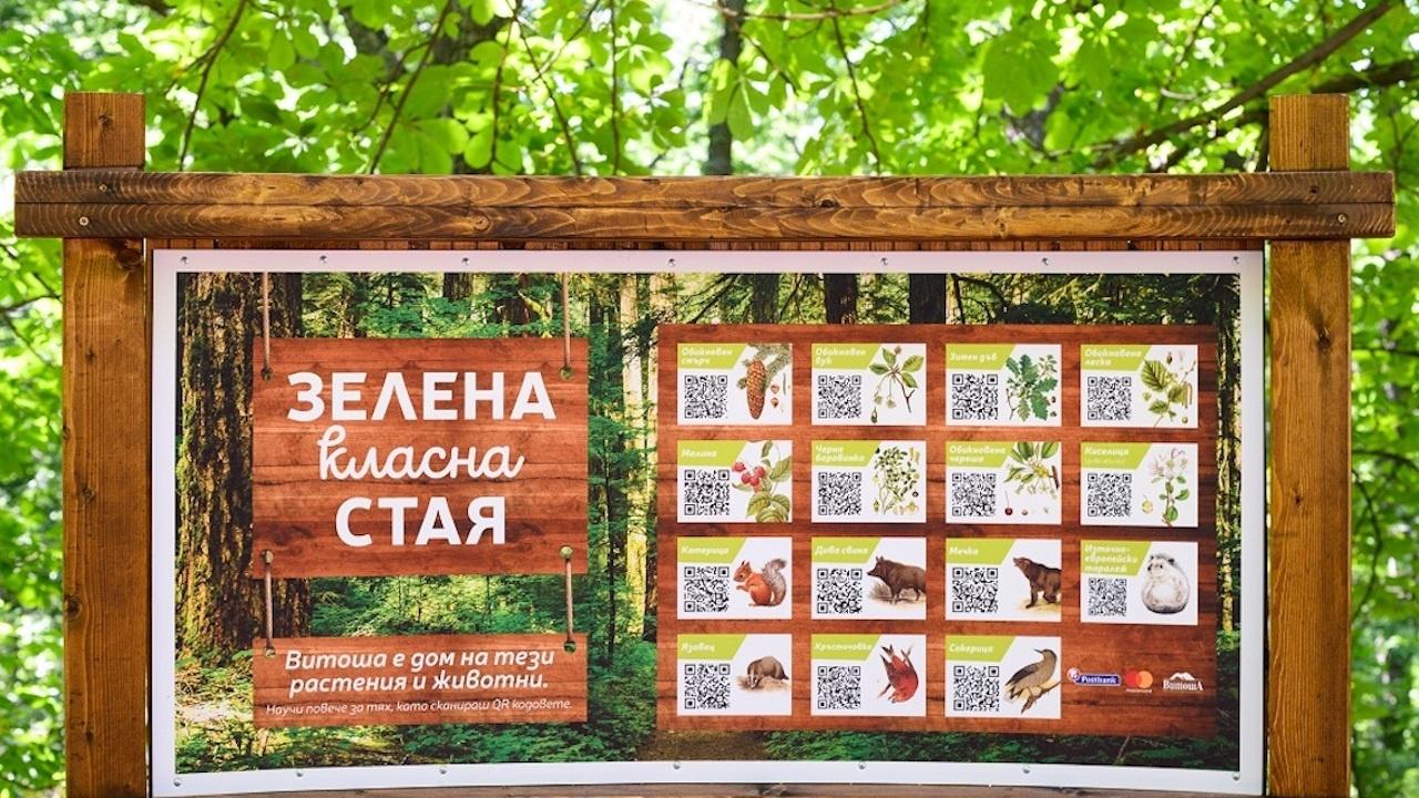 """Пощенска банка и Mastercard създадоха """"Зелена класна стая"""" на Витоша"""