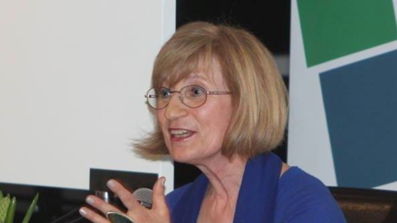 Проф. Анна Кръстева за novini.bg: Промяната в 46-то НС има 3 партийни лица - ИТН, ДБ и ИСМВ