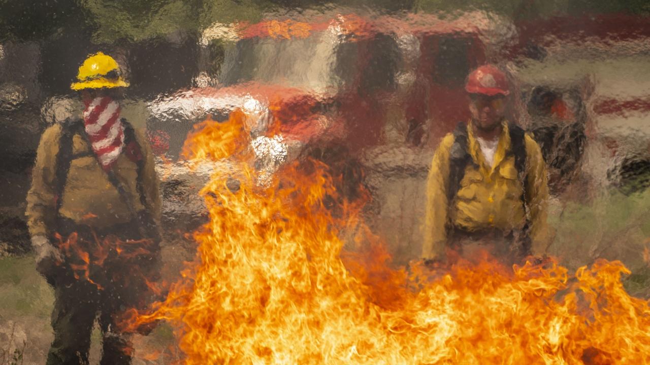 Горски пожари в САЩ: Огънят е обхванал на територията на 13 щата