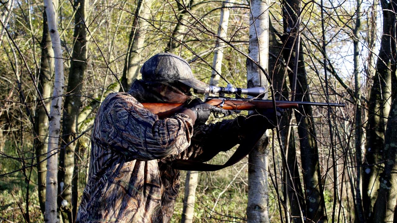 Горски шеф: Нощният лов е забранен