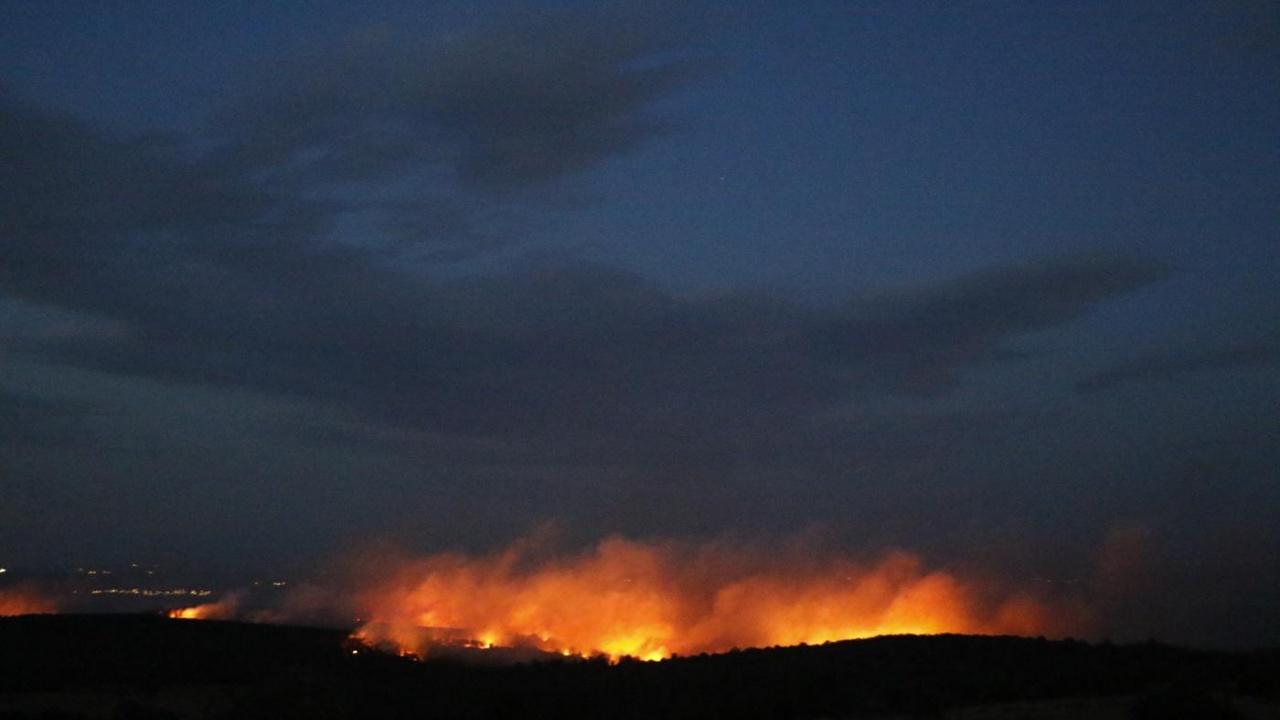 Пожар избухна в боров масив до с. Студена и с. Планиново